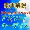 レッド・ホット・チリ・ペッパーズ  アンソニー・キーディスの歌い方・歌唱力【歌声解説】
